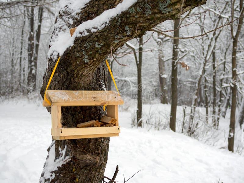 Tom fågelförlagematare i en kall vinterskog fotografering för bildbyråer