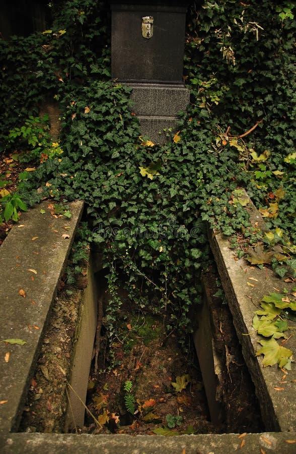 Tom grav på den Olsany kyrkogården i Prague royaltyfri bild