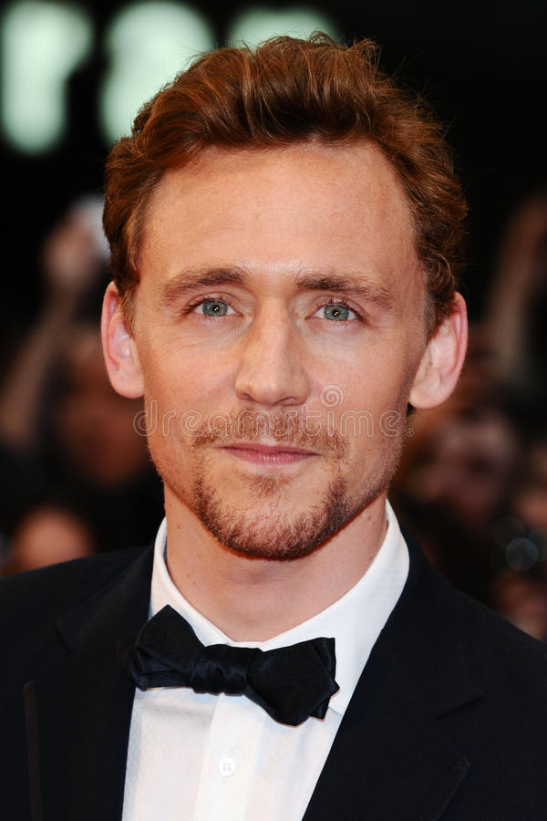 Free Tom Hiddlestone Royalty Free Stock Image - 25374546