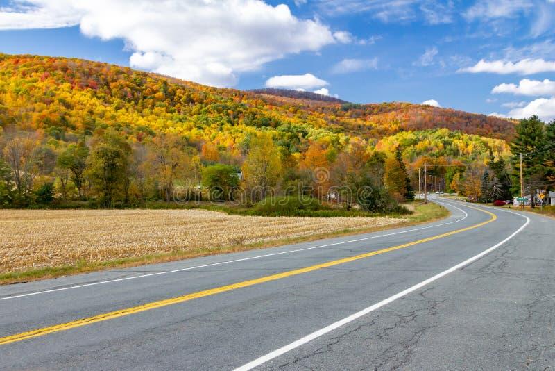 Tom huvudvägväg till och med färgrikt nedgångskoglandskap royaltyfria foton