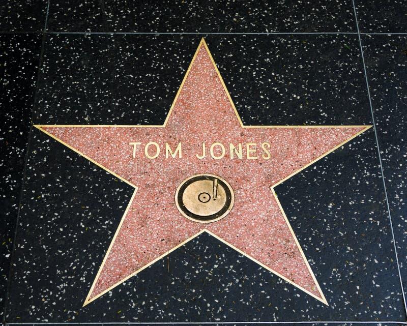 Tom Jones Star op de Hollywood-Gang van Bekendheid royalty-vrije stock afbeeldingen