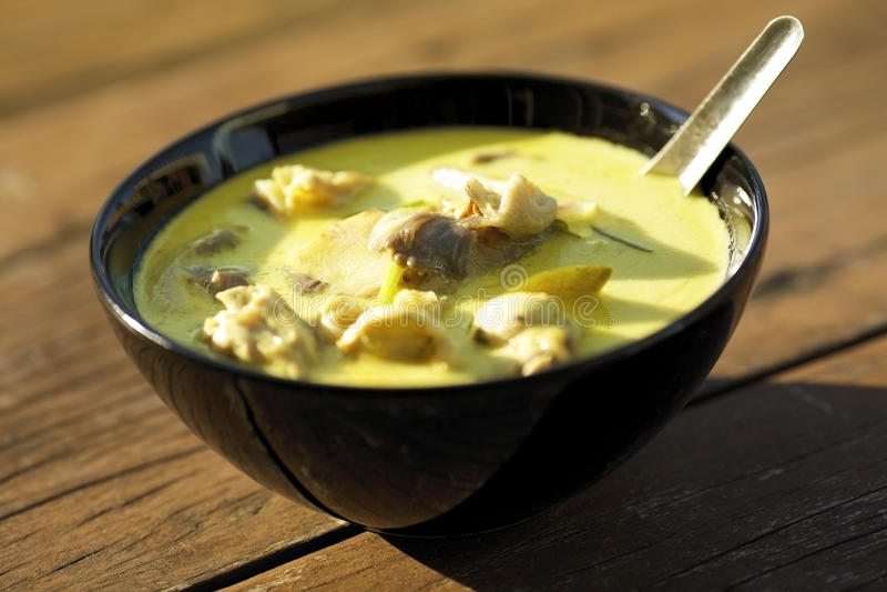 Tom Kha Gai - minestra tailandese tradizionale immagini stock libere da diritti