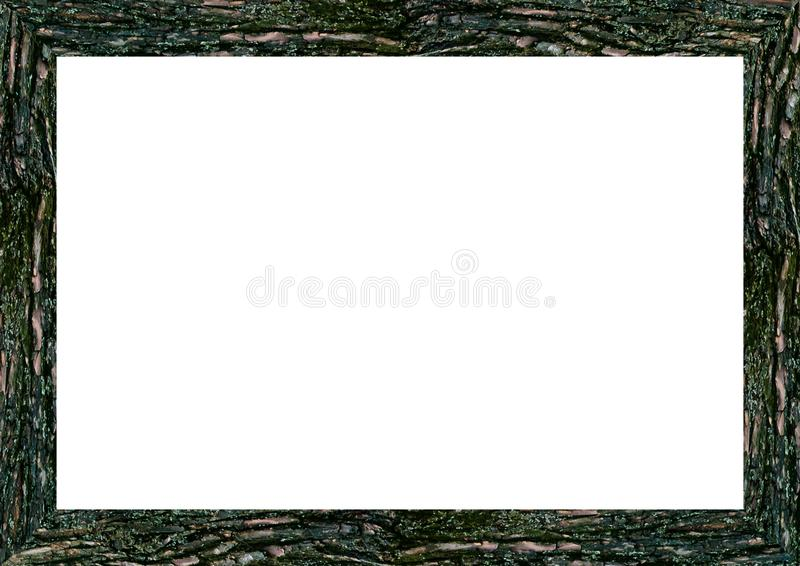 Tom landskaprambakgrund med stamkanter royaltyfria bilder