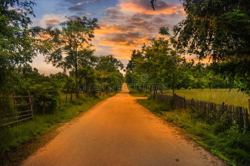 Tom landsväg på solnedgången med gröna fält och träd på båda sidor Dramatisk skymninghimmel med solljuset reflekterat på royaltyfri foto