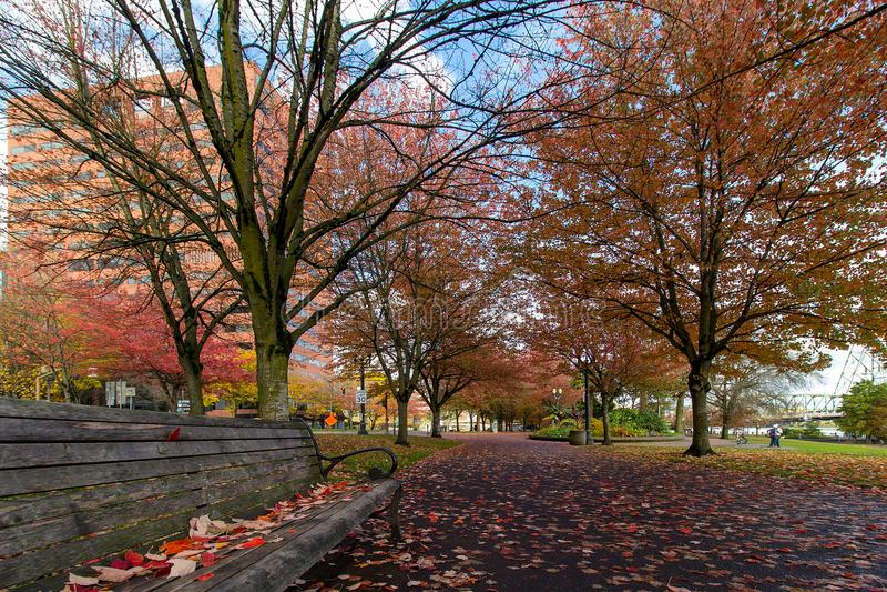 Tom McCall Waterfront Park in Dalingsseizoen stock afbeelding