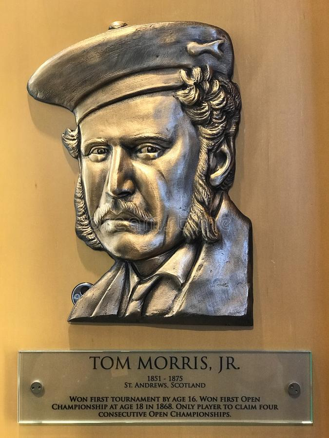 Tom Morris Jr royaltyfria foton