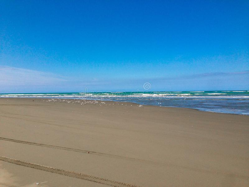 Tom strand nära Christchurch, södra ö, Nya Zeeland royaltyfri foto