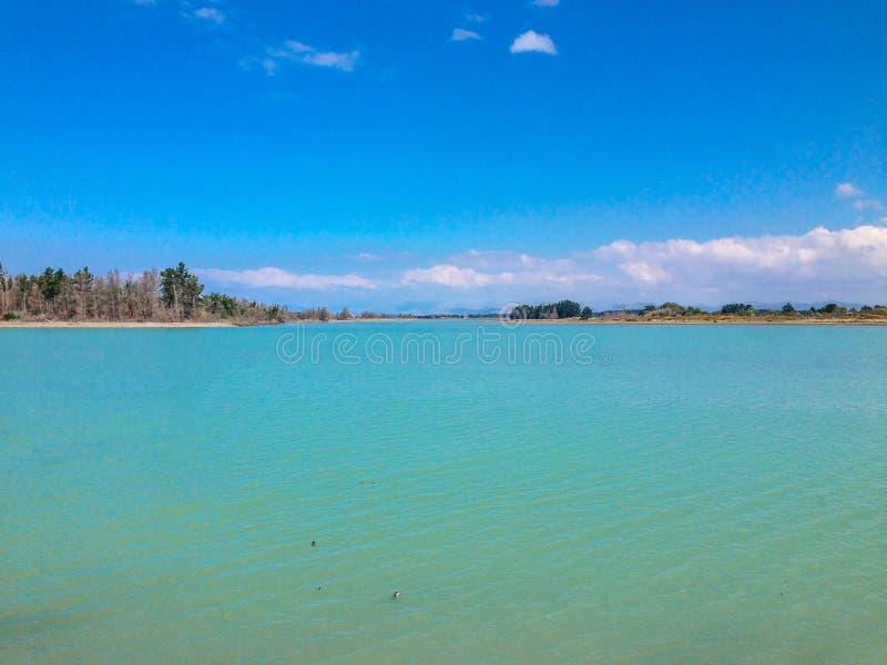 Tom strand nära Christchurch, södra ö, Nya Zeeland royaltyfri fotografi
