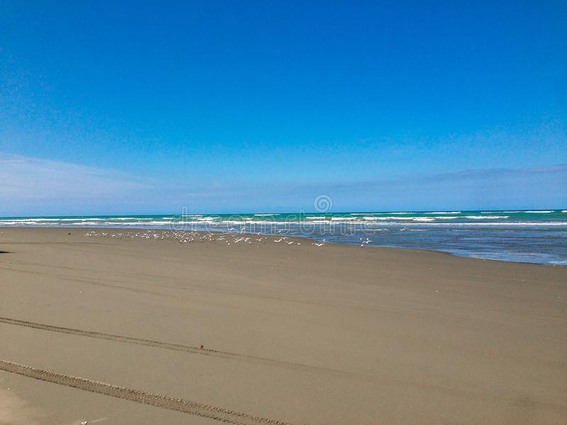 Tom strand nära Christchurch, södra ö, Nya Zeeland royaltyfri bild