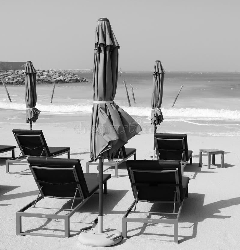 tom strand svart white arkivbild