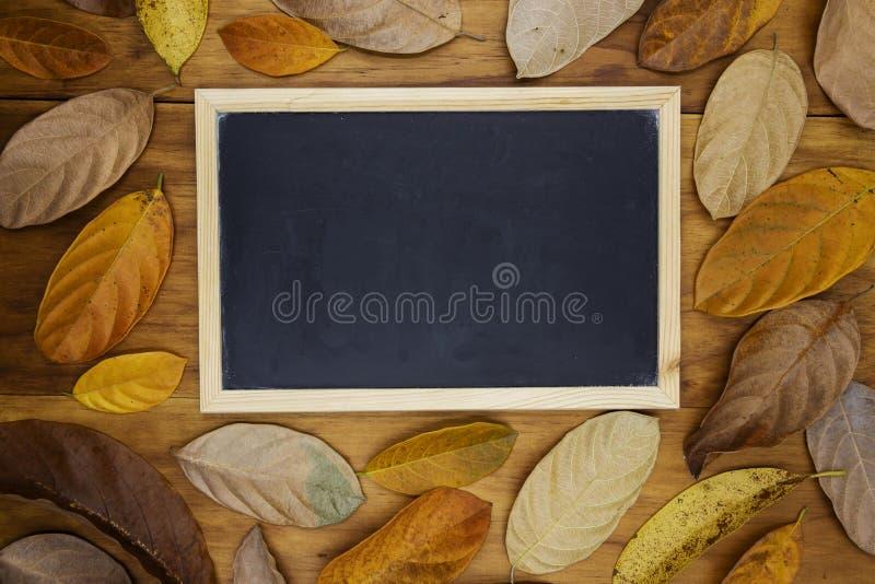 Tom svart tavla på träbakgrund i orange bladram Orange bladram på bästa sikt för tabell arkivbild
