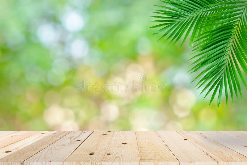 Tom träpalmblad för bokeh för gräsplan för tabellöverkant royaltyfri fotografi