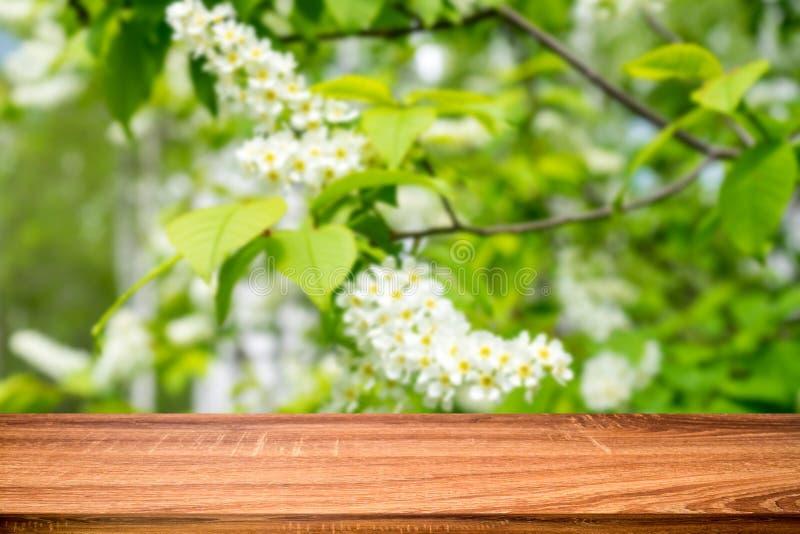 Tom trätabell med suddig vårbakgrund av att blomstra häggblommor Kan användas för skärm- eller montageprodukt arkivbilder