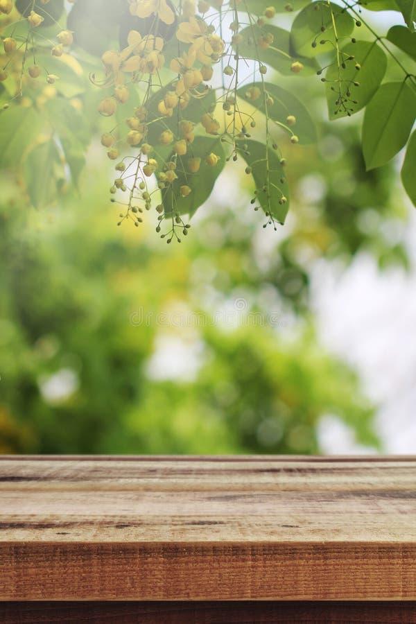 Tom trätabell och suddig härlig blommanaturbakgrund, vår royaltyfri bild