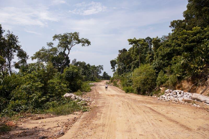 Tom väg i skog och ensam turist- vägkonstruktionsplats i grön natur Tropisk öutveckling royaltyfri fotografi