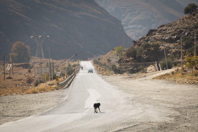 Tom väg in mot den Dasht-e Lut öknen, Iran arkivfoton
