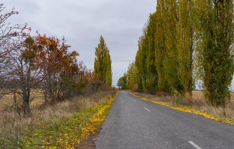 Tom väg på den molniga höstliga dagen i Sumskaya oblast, Ukraina arkivfoton
