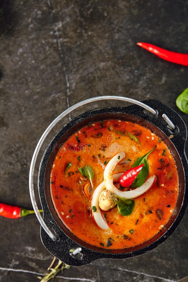 Tom Yum or Tom Yam Soup royalty free stock photos