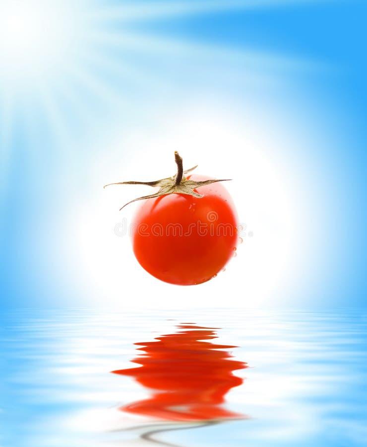 Tomaat boven teruggegeven water royalty-vrije stock afbeeldingen
