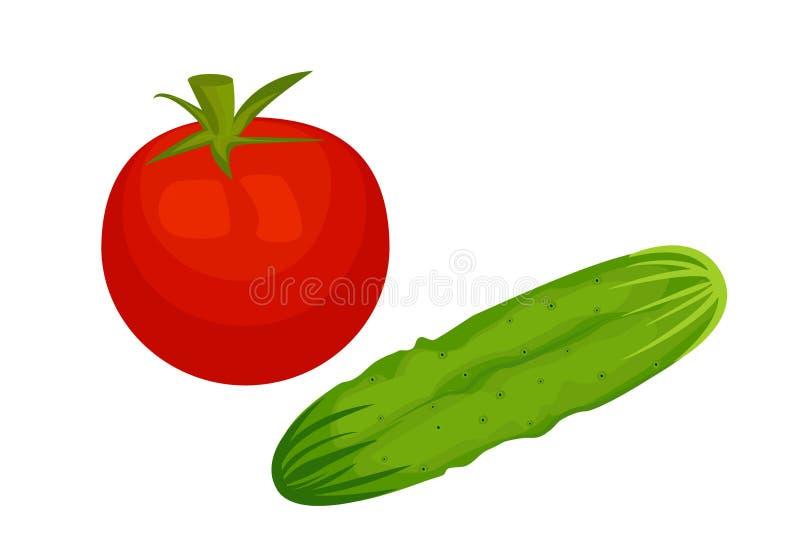 Tomaat en komkommer die op witte achtergrond wordt geïsoleerd stock illustratie