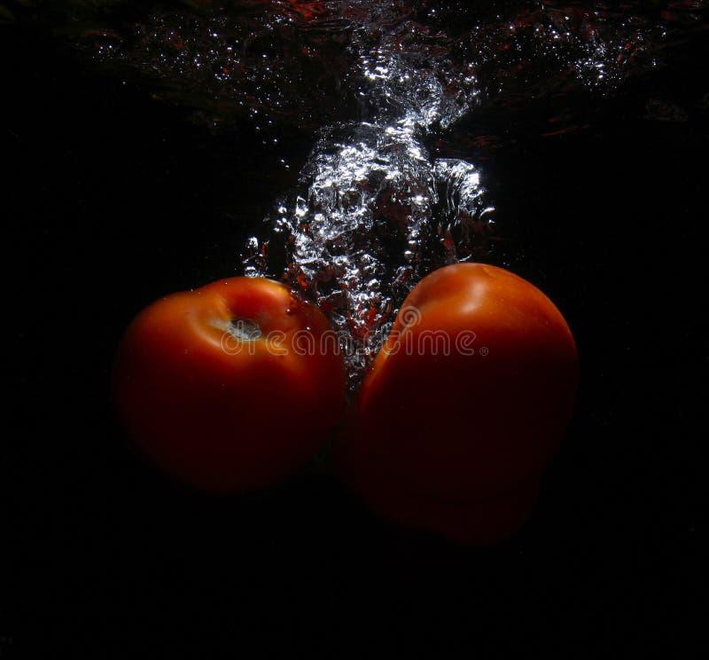 Tomaat in het water royalty-vrije stock fotografie