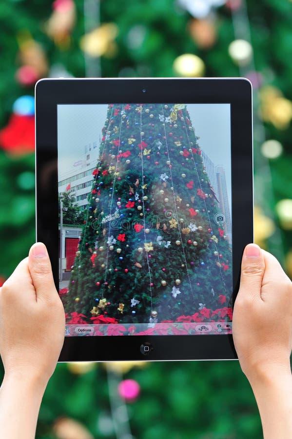 Tomar la foto del árbol de navidad fotos de archivo libres de regalías
