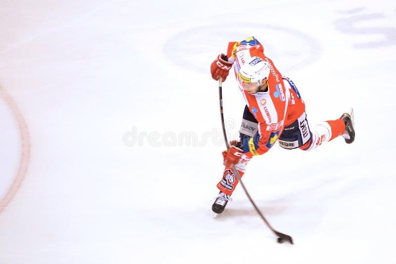 Tomas Zohorna stock fotografie