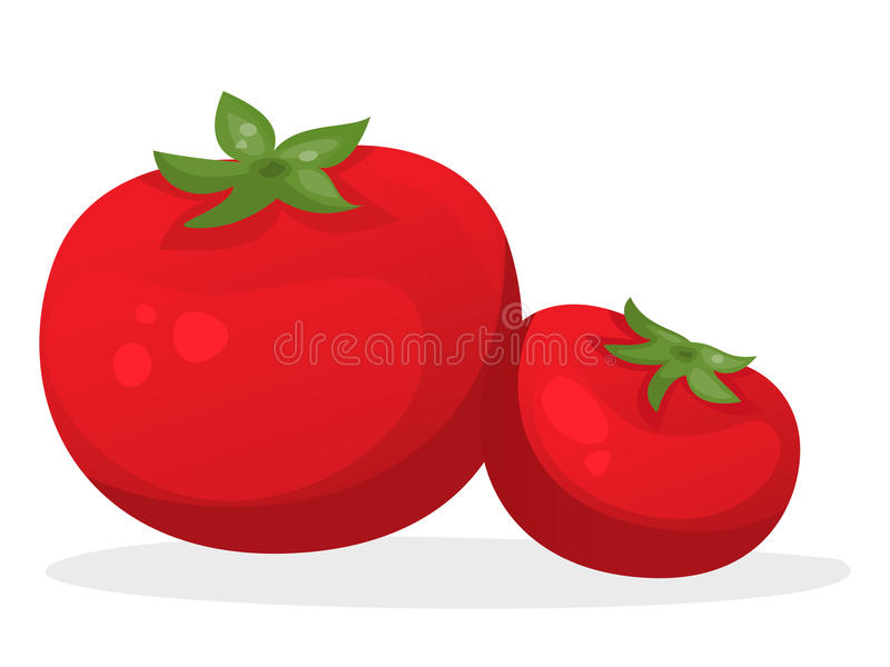 tomat stock illustrationer