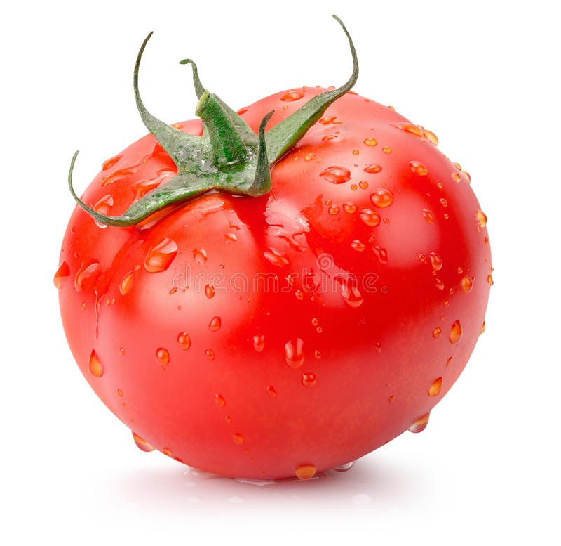 Tomat med vattendroppar som isoleras på den vita bakgrunden royaltyfri foto