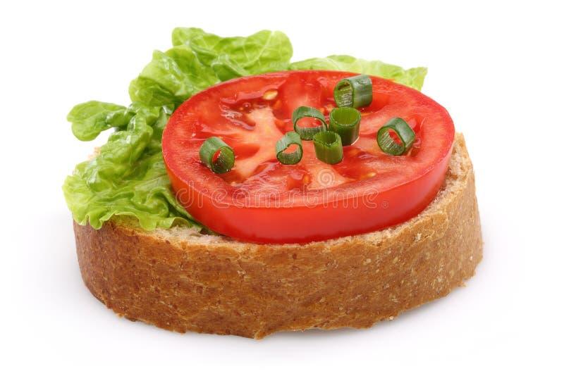 Tomat och en skiva av bröd för helt vete royaltyfria foton