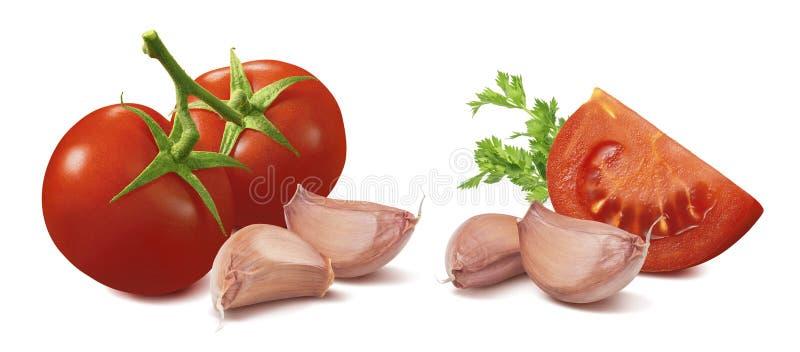 Tomat-, vitlök- och persiljauppsättning som isoleras på vit bakgrund arkivbild
