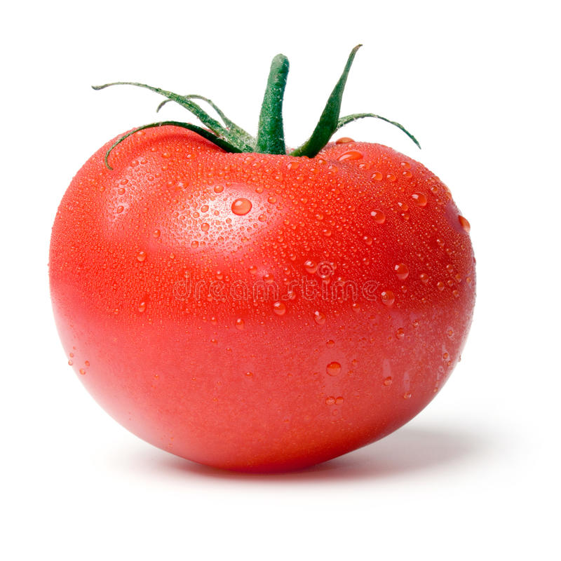 Tomate. fotos de stock royalty free