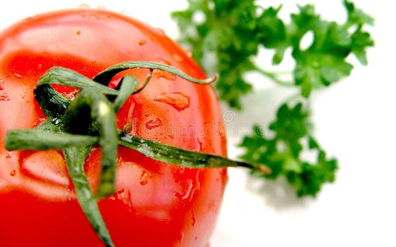 tomate 库存图片
