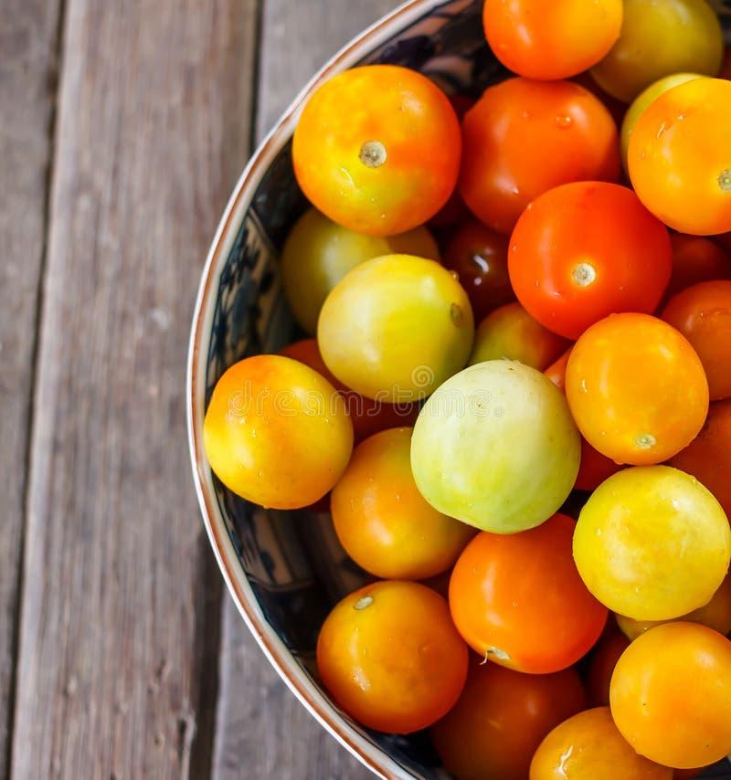 Tomate lizenzfreies stockfoto