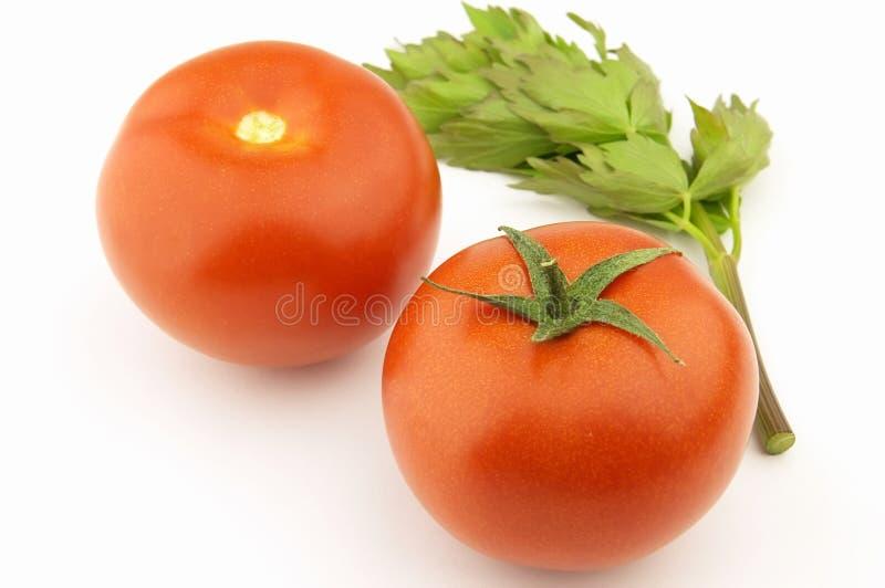 Tomate Στοκ φωτογραφία με δικαίωμα ελεύθερης χρήσης