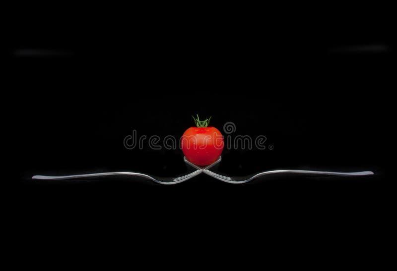 Tomate auf Gabeln lizenzfreie stockbilder