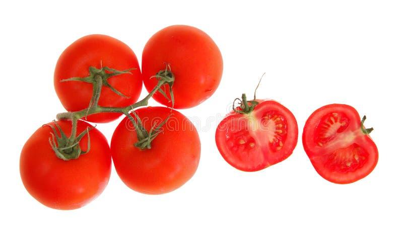 Tomate auf Rebe stockbild