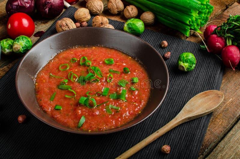 Tomate caliente de la salsa con la cebolla de la primavera y la pimienta roja imagen de archivo libre de regalías
