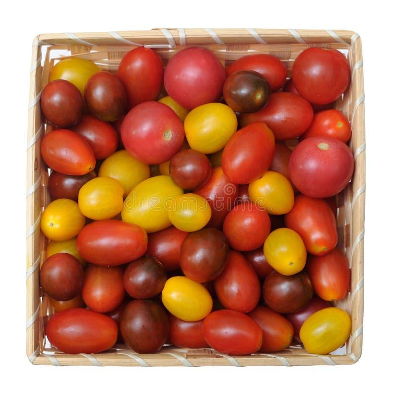 Tomate colorée de raisin photo stock