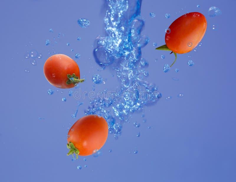 Tomate da uva em uma água fotografia de stock