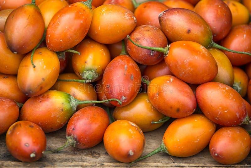 Tomate de árvore igualmente conhecido como o tamarillo em Equador foto de stock