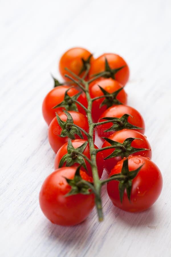 Tomate de cereja na videira fotografia de stock royalty free
