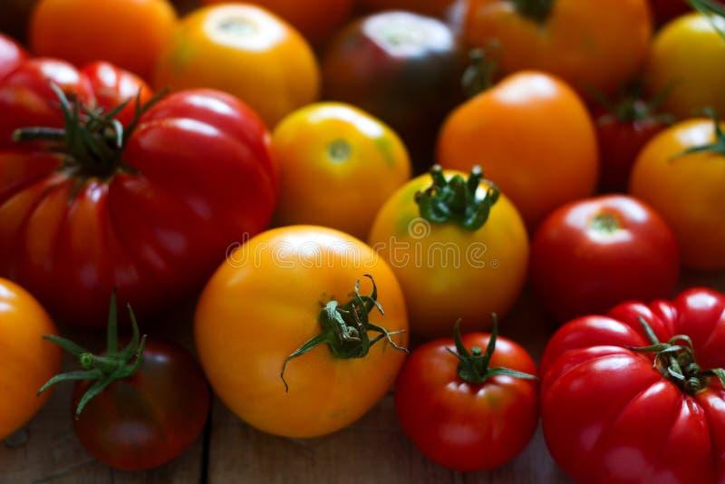 Tomate de différentes variétés sur un fond en bois images stock