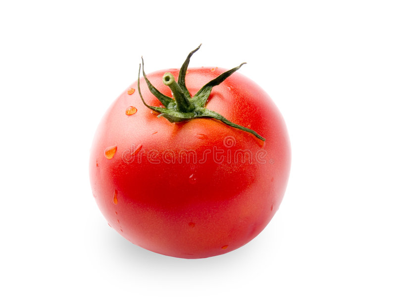 Tomate de Frash photo stock