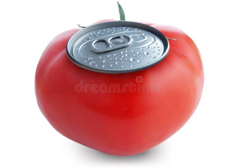 tomate de jus photo stock