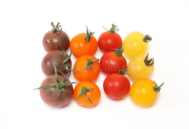 Tomate de raisin à un arrière-plan blanc image stock