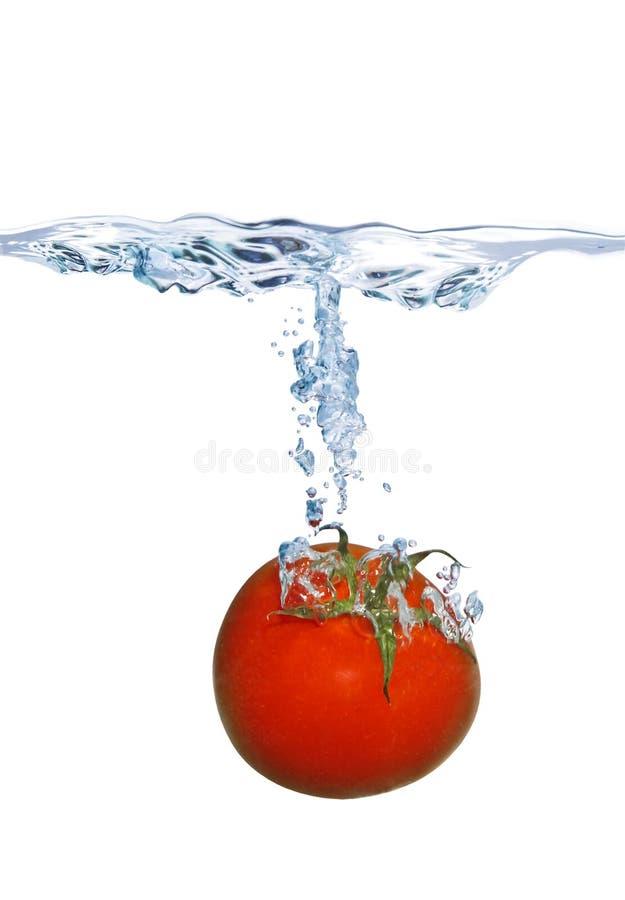 Tomate, die in das Wasser fällt lizenzfreie stockbilder