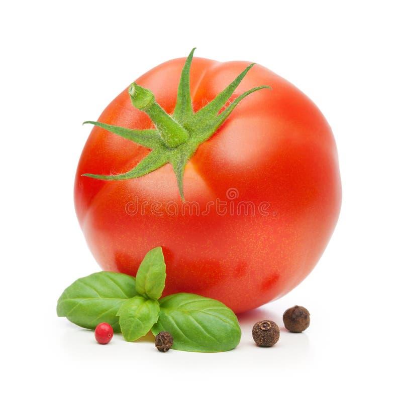 Tomate e especiaria vermelhos das folhas da manjericão fotografia de stock royalty free