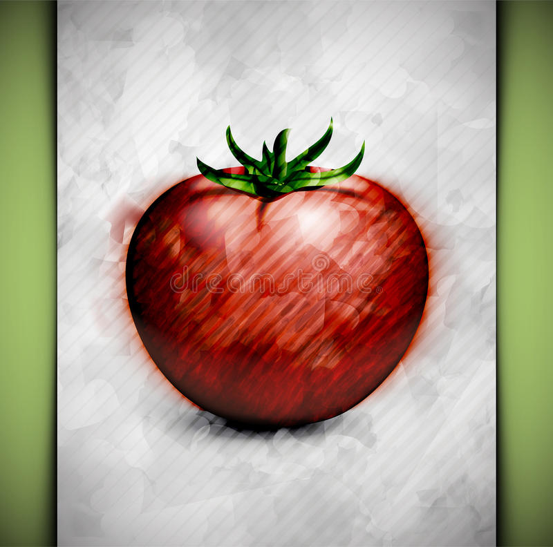 Acuarela del tomate stock de ilustración