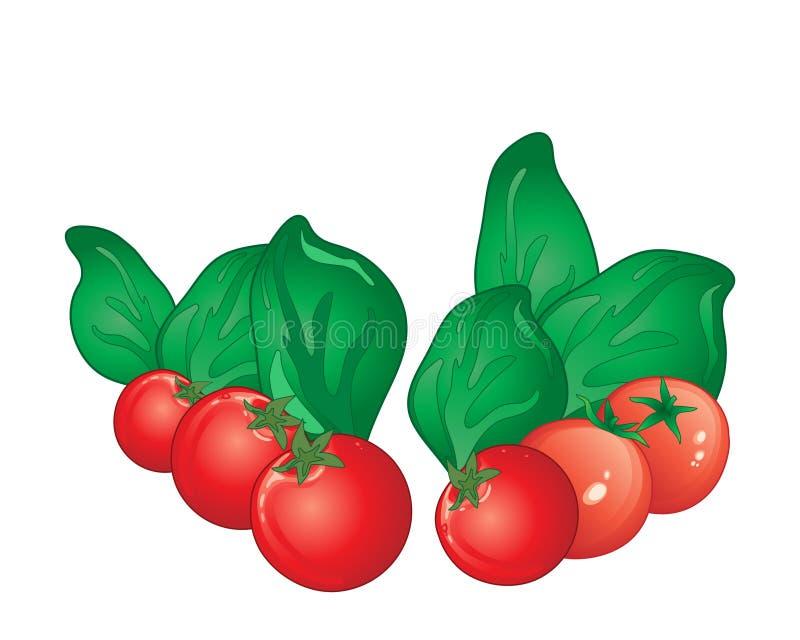 Tomate et basilic illustration de vecteur